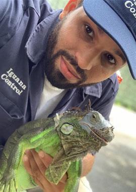 Edwin - Iguana Control